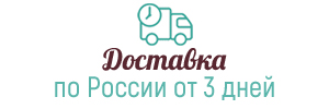 Доставка по России от 3 дней